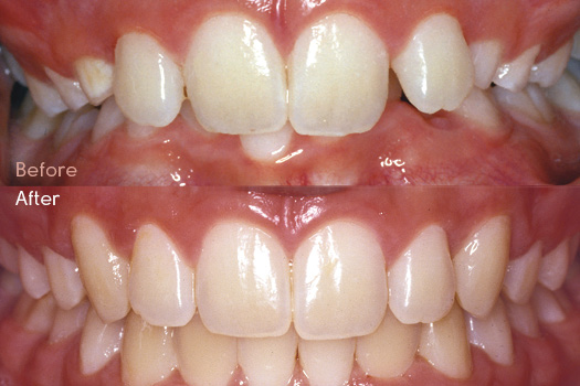 Vital Orthodontics for Dentists